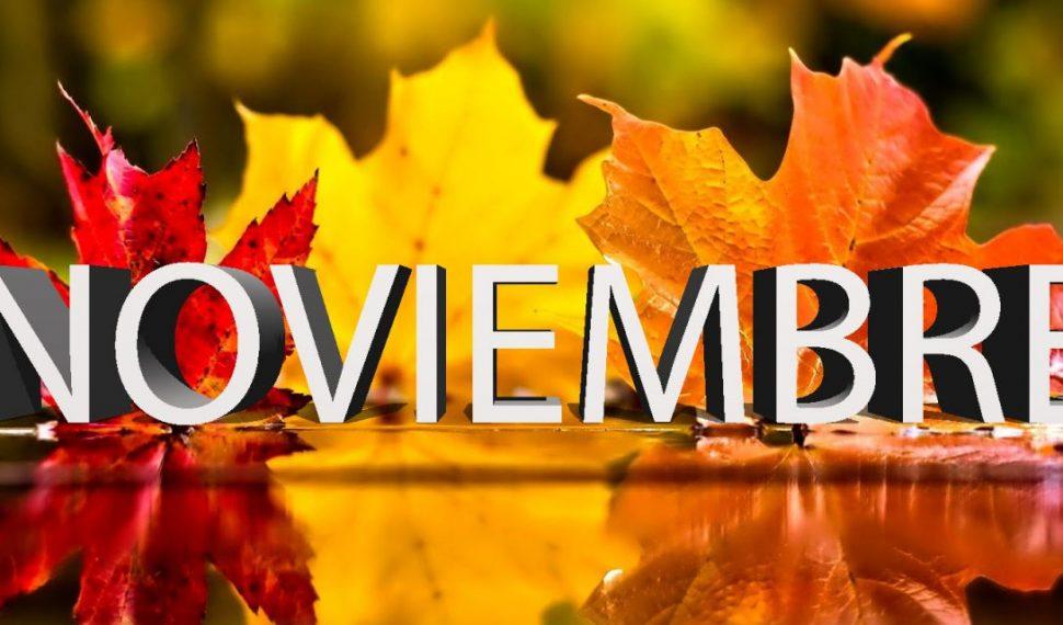 november-010-copy-1280×640-970×570